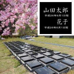 桜下庭園樹木葬2人用