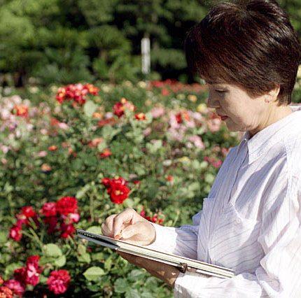 【お客様の声】私、後妻なんです。京都天が瀬メモリアル公園